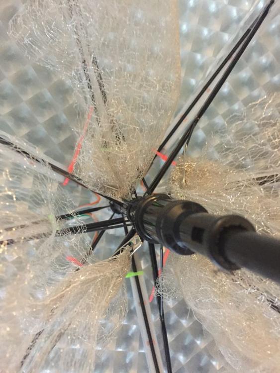 зонтик с подсветкой - светящийся зонт Jellybrella 3.jpg
