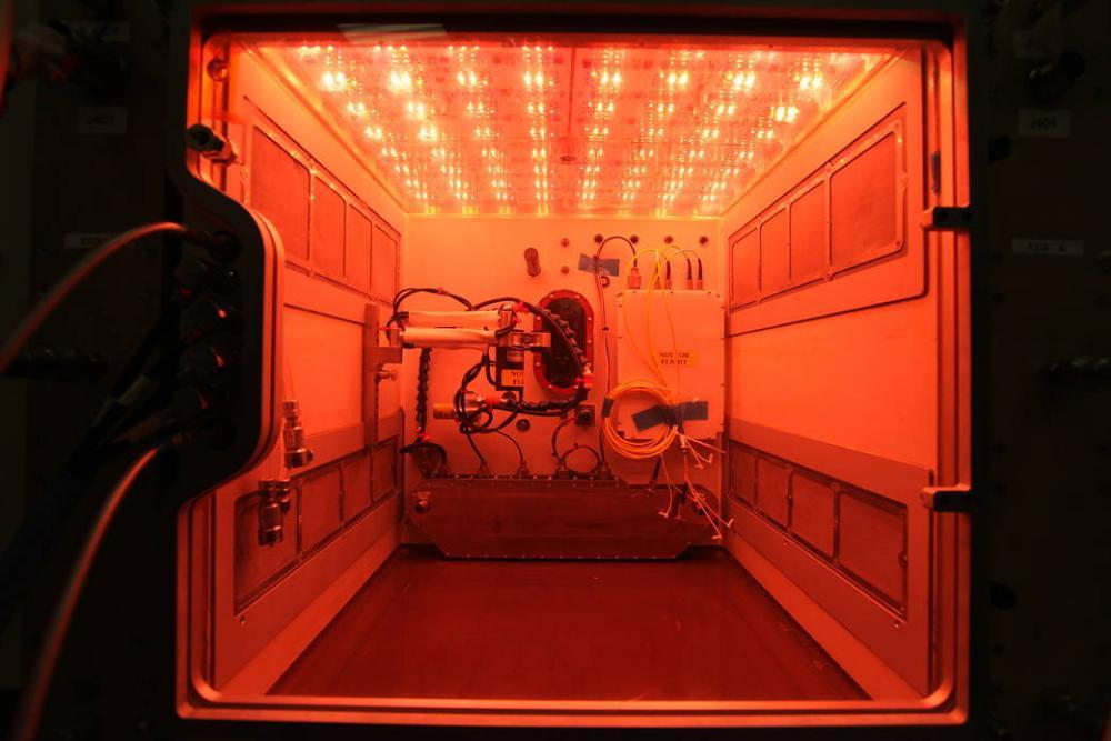 led grow lighting grow lighting space garden plants in space.jpg