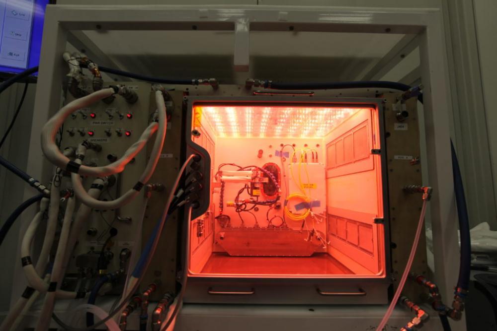 led grow lighting grow lighting space garden plants in space 2.jpg