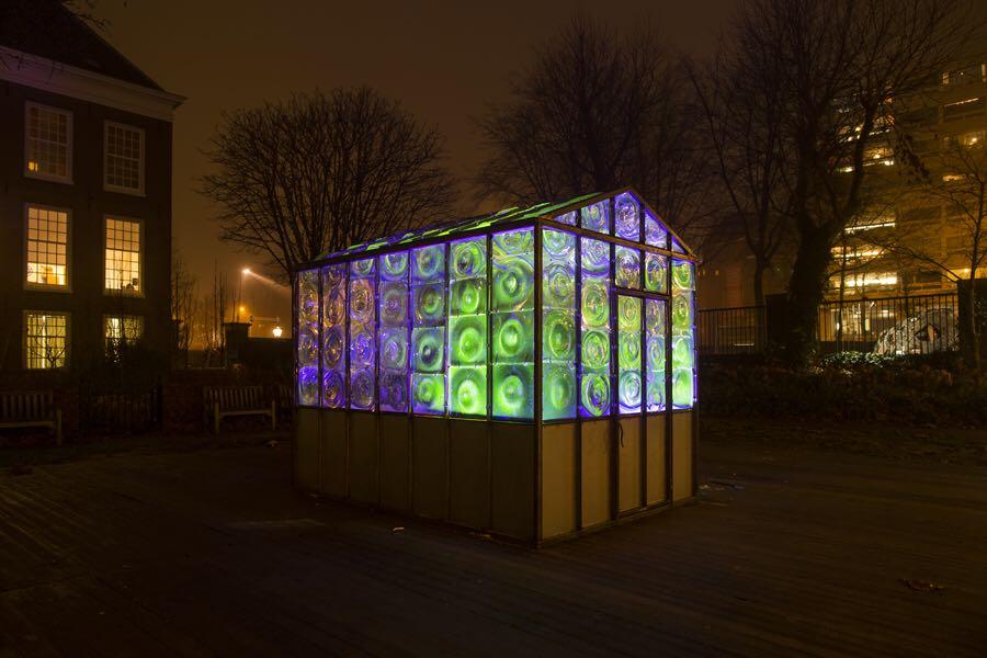 58a6e9fb825d3_Greenhouse.AmsterdamLightFestival2016-2017.jpg.05d6f7c60beedae614e4a47b5e9170f3.jpg