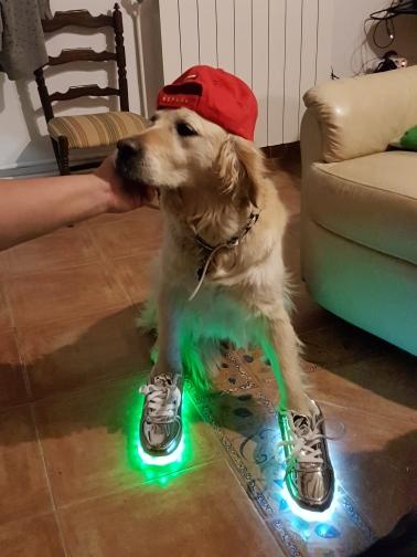 zapatos luz propia, zapatillas led niña, zapatillas led corte ingles, zapatillas led baratas, zapatillas led españa, zapatillas led madrid,