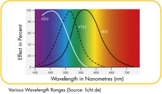 how light affects our mood × how light affects an ecosystem × how light affects sleep × circadian rhythm light fixtures