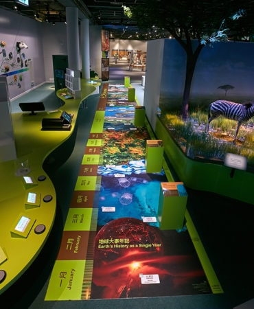 Museums LED Lighting Fixtures & Systems - led museum case lighting × led lighting museum × museum led lighting fixtures × museum led lighting systems