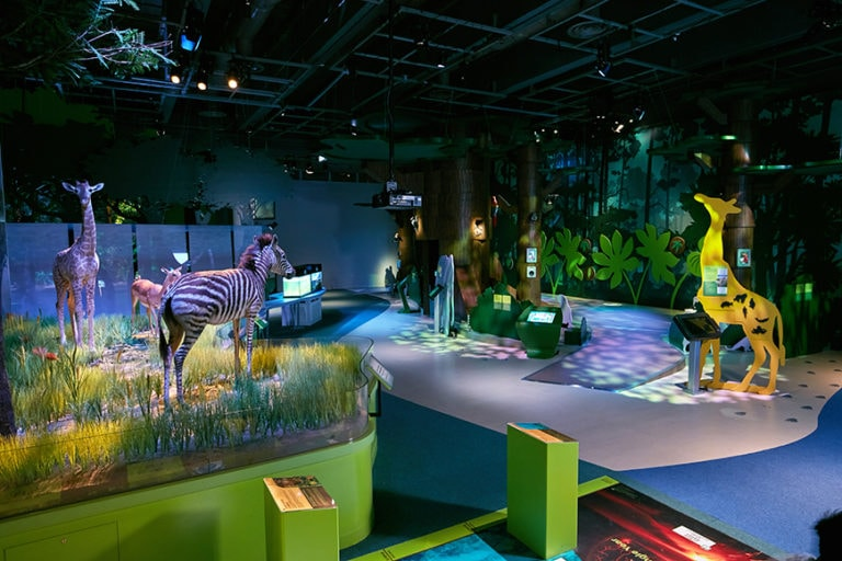 Museums LED Lighting Fixtures & Systems - led track lighting museum × led museum lighting products × led lighting museums × led lighting museum conservation